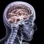 Medical Imaging Services